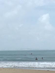 Baía dos Golfinhos Praia de Pipa RN
